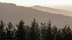 Hambleton Hills walk, New Year's Day 2019 (alh1) Tags: clevelandway hoodhill northyorkmoorsnationalpark northyorkshire england walk