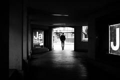 J means Ja (gato-gato-gato) Tags: apsc fuji fujifilmx100f street streetphotography x100f autofocus flickr gatogatogato pointandshoot wwwgatogatogatoch zürich schweiz ch leicamp mp leica gatogatogatoch manualfocus manuellerfokus manualmode rangefinder messsucher analog film filmisnotdead believeinfilm black white schwarz weiss bw blanco negro monochrom monochrome blanc noir strasse strase onthestreets streettogs streetpic streetphotographer mensch person human pedestrian fussgänger fusgänger passant switzerland suisse svizzera sviss zwitserland isviçre zuerich zurich zurigo zueri fujifilm fujix x100 x100p digital