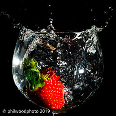 365-2019-012 - Strawberry drop (phil wood photo) Tags: 365 365colorfun 365colourfun color365 colour365 day12 fruit glasss highspeed january messy red singlestrobe splash square strawberry water