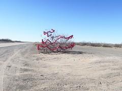El Paso to Columbus-Highway 9 red sparklies 4 (Mzuriana) Tags: elpaso texas newmexico columbus highway9 decoratedtree redsparklies red