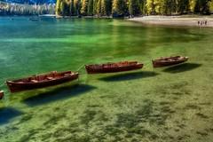 Sospese (giannipiras555) Tags: autunno lago colori verde alberi natura barche collina landscape panorama