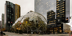 Amazon Sphere (4 Pete Seek) Tags: seattle seattlewa seattlewashington seattlearchitecture amazon amazonsphere downtown downtownseattle architecture modernarchitecture wideangle ultrawideangle superwideangle swa uwa wa manualfocus