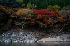 DSC09711 (wertyuioqp) Tags: river kyoto japan arashiyama boat rafting trees mountains nature autumn fall