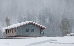 Winter Scene (ARTUS8) Tags: nikon18105mmf3556 schnee nikond90 winter baum berg landschaft hütte flickr gebäude snow landscape tree