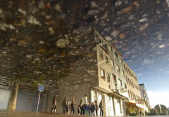 Bursting Tree Hits the Building (andressolo) Tags: reflection reflections reflejos puddle people building buildings edificio water children tree trees city urban town pontevedra