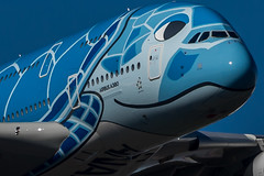 All Nippon Airways A380 (Rami Khanna-Prade) Tags: anacouchii couchii lani hawaii turtle flyana ana ja381a allnipponairways 全日本空輸 bairbus380 全日空 flyinghonu planespotting anaa380 aviation airbuslovers aviationlovers japan a388 a380 ホヌ初号機 エアバス フライングホヌ avgeek