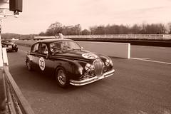 Jaguar Mk1 1959, HRDC Track Day, Goodwood Motor Circuit (14) (f1jherbert) Tags: sonya68 sonyalpha68 alpha68 sony alpha 68 a68 sonyilca68 sony68 sonyilca ilca68 ilca sonyslt68 sonyslt slt68 slt sonyalpha68ilca sonyilcaa68 goodwoodwestsussex goodwoodmotorcircuit westsussex goodwoodwestsussexengland hrdctrackdaygoodwoodmotorcircuit historicalracingdriversclubtrackdaygoodwoodmotorcircuit historicalracingdriversclubgoodwood historicalracingdriversclub hrdctrackday hrdcgoodwood hrdcgoodwoodmotorcircuit hrdc historical racing drivers club goodwood motor circuit west sussex brown white sepia bw brownandwhite