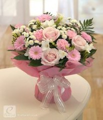 The Modern Rules Of Good Birthday Flowers   good birthday flowers (franklin_randy) Tags: birthday flowers best cake delivery for girlfriend him wife images pictures sale good mom
