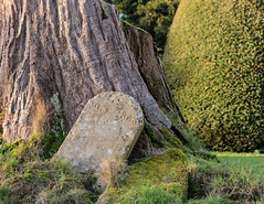 Tombstone (microwyred) Tags: stonematerial forestwoods parkmanmadespace rushock landscape church nature scenics places greencolor nopeople cycling wildflowers grass tree forest rockobject stoneobject landscapes plant famousplace outdoors old elmbridge