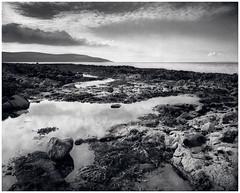 Flaggy Shore, Co Clare (Searcher Irl) Tags: 125 5x4 9mins analogue blackhead burren chamonix fields flaggyshore largeformat light monochrome oct2018 rodinal wildatlanticway film ilford