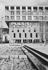 Puls 5 Zürich (titan3025) Tags: leica leicam6 m6 blackandwhite zürich analog photography grainisgood ilford hp5 ilfordhp5 2019