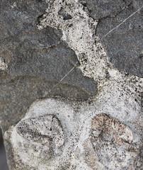 DSC_0866 (1) (jgdav) Tags: macro rock cement image ancient quartz pigment petroglyph pictograph america