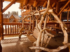 Tree Bench (Mr. Happy Face - Peace :)) Tags: benchs lonelybench art2019 swing rustic chair lakelouise cans2s skihill lodge timber wood interesting emptyseat