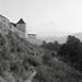 RO18 R2-07 Cetatea Râşnov. Râşnov, Braşov. (Rolleiflex 3,5 Ilford FP4+)