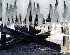 Many Icicles Under A Pier; Long Island, New York (hogophotoNY) Tags: ice sony sonyf717 f717 digital hogo hogophoto pier marina winter cold icicles dock longislandsound newyork ny nystate eastcoast longisland kingspoint kingspointny usa us
