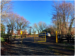 Daily dose of Vitamin D (JulieK (thanks for 8 million views)) Tags: 2019onephotoeachday hff fence gate car trees tinternwoods sunshine iphonese bluesky wexford ireland irish outdoor sunny winter