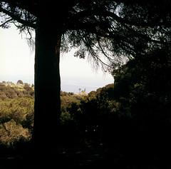 Calella lighthouse (fedorrrz) Tags: calella spain tree lighthouse square mediumformat 6x6 kiev88