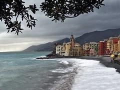 Camogli (Jolivillage) Tags: jolivillage camogli ligurie liguria italie italia italy europe europa mer mare sea méditerranée mediterraneo waves vagues eau acqua water picturesque geotagged