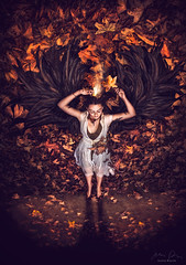 Phoenix ({jessica drossin}) Tags: jessicadrossin portrait fine leaves leaf wings feather flame flames fire shadow woman girl wwwjessicadrossincom