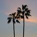 Magic Hour - West Hollywood, CA
