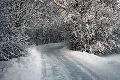Talvine kõnnitee (Jaan Keinaste) Tags: pentax k3 pentaxk3 eesti estonia harjumaa raevald jürialevik talv winter lumi snov kõnnitee sidewalk