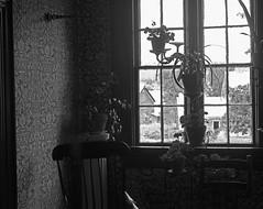 View of Kings Landing (RockN) Tags: view farmhouse august2016 kingslanding newbrunswick canada 1000placescanada