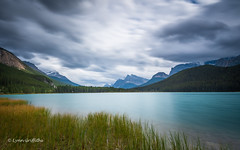 Waterfowl Lake D85_4424.jpg (Mobile Lynn) Tags: water moody landscape longexposure lake mountain landscapephotography outdoorphotography improvementdistrictno09 alberta canada ca