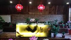 Moonshot Academy Retreat, Beijing, Feb-2019 (maltman23) Tags: beijing china msa msaretreat moonshotacademy