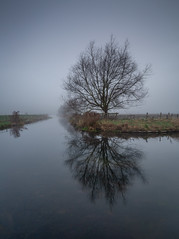 Tree reflections (paullangton) Tags: tree mist misty water river winter cold landscape reflections longexsposure leefilters canon hertford hertfordshire park field countryside nature outdoors
