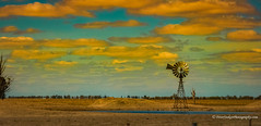 Reflecting a sun burnt country (Peter.Stokes) Tags: australia australian colour landscape nature outdoors photo photography landscapes countryside clouds sunset sun windmill