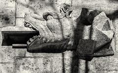 A Carved Dragon (Maybe Lion) Figure - Front of  La Lonja de Seda - The Silk Exchange - Valencia  (Monochrome) (Olympus OM-D EM5-II & Sigma 56mm f1.4 DN Prime) (markdbaynham) Tags: valencia spain espana espanol city cityscape ciutat citybreak citylife spainishcity spainish valencian valenciacanibal urban urbanlife metropolis medievalcity famousplace historicplace historiccity vlc street olympus mft olympusmft omd omdm43 m43 mirrorless microfourthird microfourthirds csc evil em5 em5markii em5ii em5mk2 em52 micro43 m44rd m43rd micro43rd bw blackwhite monochrome sigma sigmadn 56mm f14 prime primelens stonework lalonja silkexchange lalonjadeseda olympistas spanish fixedlens