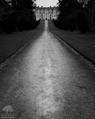 Carrying on the Manor House theme, Montacute House, Somerset. (James Mc Innes) Tags: 2019 24105mmf4iil afternoon architectural bw blackandwhite canon canon7dmkii dayout jamesmcinnes landscapes leadingline lightroom mannorhouse march monochrome montacute montacutehouse nationaltrust photoshop somerset spring weekend year
