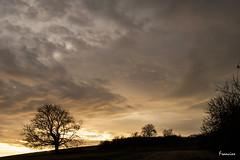 DSC_1627 (Francinen89) Tags: ciel sky sunset coucherdesoleil landscape paysage nature nuages clouds nikon france bourgogne burgundy