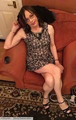 January 2019 - Quiz dress (Girly Emily) Tags: crossdresser cd tv tvchix trans transvestite transsexual tgirl tgirls convincing feminine girly cute pretty sexy transgender boytogirl mtf maletofemale xdresser gurl glasses dress hull highheels hosiery tights hose stilettos smile