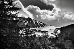 A Snowcapped Mountainside (Black & White, North Cascades National Park) (thor_mark ) Tags: azimuth91 blackwhite blueskies bluesskieswithclouds bucknerbostonmassif capturenx2edited cascaderiverroad cascades centralnorthcascades cloudsaroundmountainpeaks cloudsaroundmountains colorefexpro day8 evergreentrees evergreens glacier grassymeadow hillsideoftrees icefield landscape lookingeast meadows mountainbeyondthetrees mountainpeak mountains mountainsindistance mountainsoffindistance mountainside nature nikond800e northcascadesnationalpark northcascadesnationalparkcomplex northcascadesnationalparkservicecomplex outside pacificranges partlycloudy project365 rollinghillsides sahalepeak silverefexpro2 snowonfaroffmountainpeaks snowcapped sunny talltrees trees triptonorthcascadesandwashington washington unitedstates