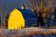 In The Light of Day (James Neeley) Tags: idaho sunrise barn winter jamesneeley