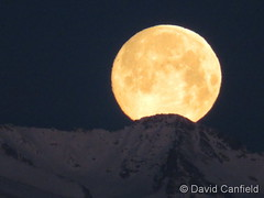 March 20, 2019 - The last setting moon of winter, a super moon. (David Canfield)