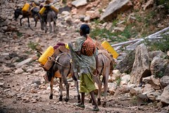 Village Water (Rod Waddington) Tags: africa african afrique afrika äthiopien ethiopia ethiopian ethnic ethnicity etiopia ethiopie etiopian oromo tribe traditional tribal culture cultural water village donkeys
