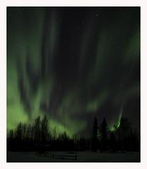 Northern Lights (www.halkaphoto.com) Tags: usa alaska fairbanks northpole 64°north 64°n northernlights aurora borialis nightsky nightscape nikon d800e sigma 1424mmf28art