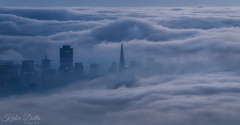 Dream flow! (wandering indian) Tags: fog landscape cityscape sigma sigmaphoto sanfrancisco california buildings architechture skyline