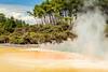 FROM WONDERLAND TO TAUPO (www.PhoTophe.com) Tags: canon christophehervouet efs1855mmf3556isii eos1300d hotsprings hotwater newzealand photoshopcc rotorua thermalwonderland waiotapu
