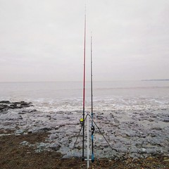 Day 4's photograph is of one of my favourite hobbies, fishing. Unfortunately it was un unsuccessful day. #fish #fishing #hobbies #shorefishing #beachfishing #tightlines #blanked #doubletrouble #rocklin #rocklingfish #project365 #365project #photography #p (t.lilley94) Tags: sealife aim 365daychallenge dayatthebeach phonephotography blanked scenery landscapephotography 365project rocklin goals fishing bridgend beachfishing project365 wales photochallenge tightlines hobbies shorefishing fish rocklingfish beach day3 challenge southwales evening doubletrouble photography landscape