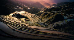 The rice terraces in Long Ji (Massetti Fabrizio) Tags: sunrise sun sunlight fabriziomassetti famasse horseman guilin guangxi guanxi green cina china terrace fields fog landscape landscapes film rodenstock