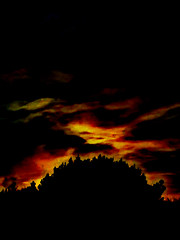 Morning Clouds (Steve Taylor (Photography)) Tags: digitalart dark contrast black orange yellow newzealand nz southisland canterbury christchurch tree silhouette dawn sunrise autumn stormy cloud southnewbrighton