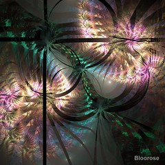 Tremulous Logic (bloorose-thanks 4 all the faves!!) Tags: apophysis apo abstract art fractal flame digital