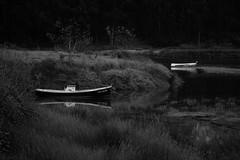 "Foz Galicia XIV (L. Vital [www.linovital.com]) Tags: art europe forest landscape light lino ""lino vital"" nature photo photography photos spain trees vital water bosque árbol río agua paisaje hierba"