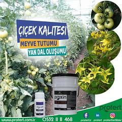 citocell (Profert Gübre) Tags: profert print spring toprak fertilizer afet doğalafet gübre agro agriculture yandal çiftçi sebzecilik meyvecilik çifçi sulama summer mildiyösü
