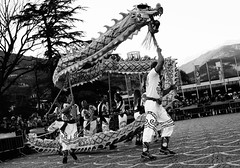 (luispedervel) Tags: newyear pig zodiac china trento dragon lion dance kungfu dante piazza italy awesome culture art