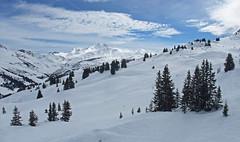 DSCF3751 (Laurent Lebois ©) Tags: laurentlebois france nature montagne mountain montana alpes alps alpen paysage landscape пейзаж paisaje savoie beaufortain pierramenta arèchesbeaufort