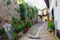calle Logroño Guadalupe Caceres (Rafael Gomez - http://micamara.es) Tags: esp españa extremadura guadalupe calle logroño caceres